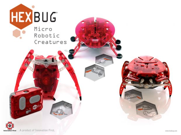 hexbug1