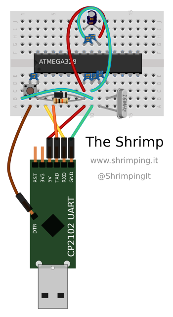 shrimp_breadboard