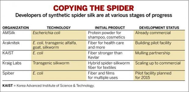 gen-tech-spider-silk